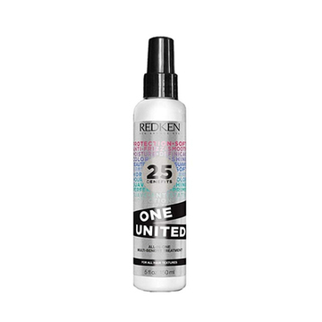 Anti Frizz Behandlung One United Redken (150 ml)