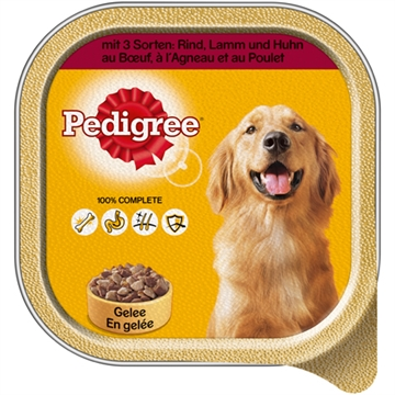 Pedigree 3 kinds of meat 300g Bowl