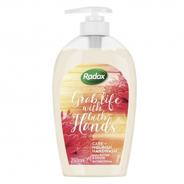 Radox AntibacterialHand Wash Nourishing 250ml